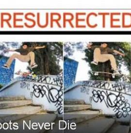 10 resurrected spot