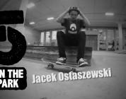 5 In The Park Jacek Ostaszewski