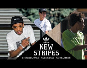 adidas Skateboarding New Stripes