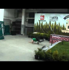 Agata Halikowska - Malita support program