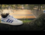 Alltimers X adidas Skateboarding