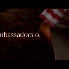 Ambassadors - zajawka