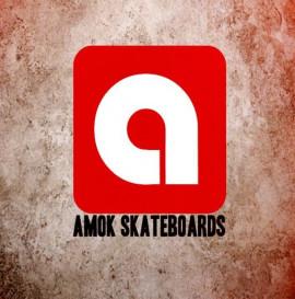 AMOK skateboards Warsaw trip