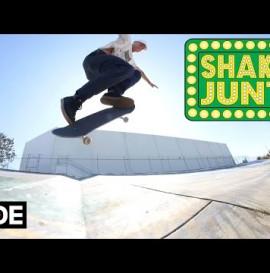 Andrew Reynolds - Shake Junt Pro Bearings