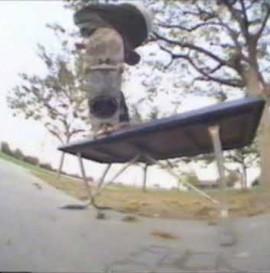 BEAGLEONEism - Baker Skateboards Baker 2G