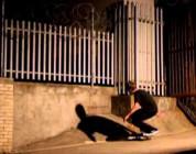 Big Push 2010: Nike SB Team Edit