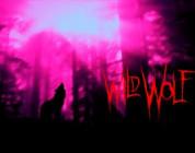 Deskorolkowe talenty spod skrzydeł Wild Wolf
