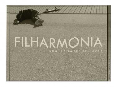 Filharmonia - świeże drewno.
