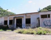 Gold Wheels in El Refugio