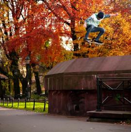 Kuba Brniak - jesień.