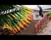 Magnified: Aaron Homoki