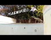 Magnified: David Gravette