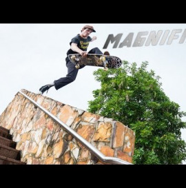 Magnified: Dolan Stearns