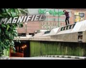Magnified: João Allen