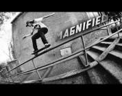 Magnified: Tim Zom