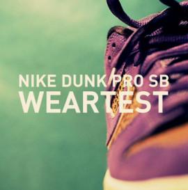 Nike Dunk Pro SB Weartest