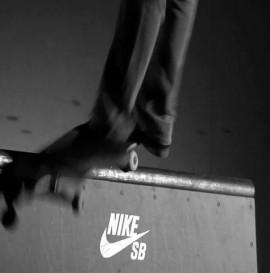 Nike SB Winter 2010