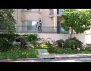 "OFFICIAL BONES WHEELS VIDEO II ""NEW GROUND"""
