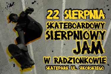 Otwarcie skateparku w Radzionkowie