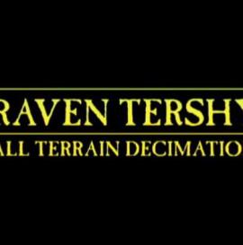 Raven Tershy Remix