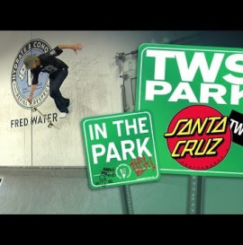 Santa Cruz In the Park: Transworld