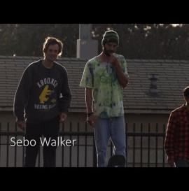 SEBO WALKER 240FPS SLOW MO