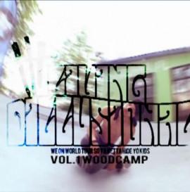 SK videolog LIVING DILLUSIONAL vol.1