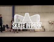 Skate In Park 2017