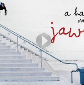 THE SKATEBOARD MAG - A HAPPY MEDIUM 3: JAWS