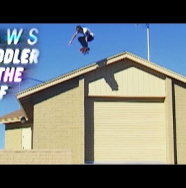 Aaron Homoki - Criddler On the Roof
