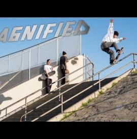 Magnified: Daniel Malkovich