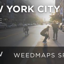 New York City - Skate