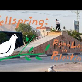 Ryan Lay in Palestine Video