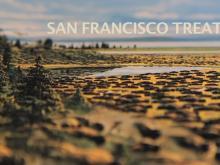 SAN FRANCISCO TREAT #12