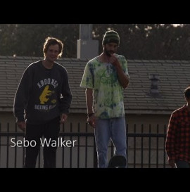 SEBO WALKER 240FPS SLOW MO