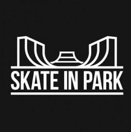 Skate In Park 2020 : Kasza X Łazik Ostatnie Larmo edit