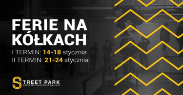 Street Park Kraków - Grupa Techramps
