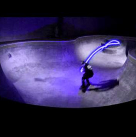 Visualizing The Lines - Vans Pool Party Series